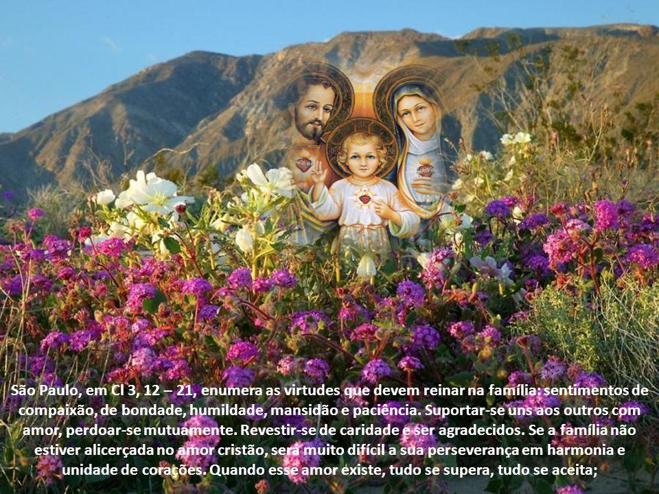 São Paulo, em Cl 3, 12 – 21, enumera as virtudes que devem reinar na família: sentimentos de compaixão, de bondade, humildade, mansidão e paciência.