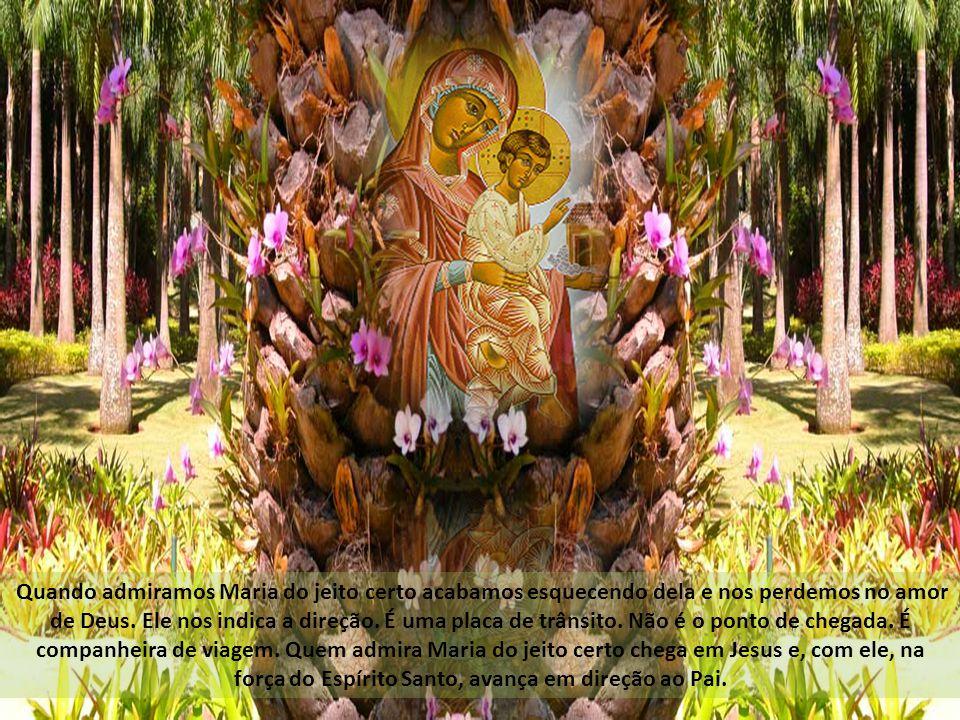 Quando admiramos Maria do jeito certo acabamos esquecendo dela e nos perdemos no amor de Deus.