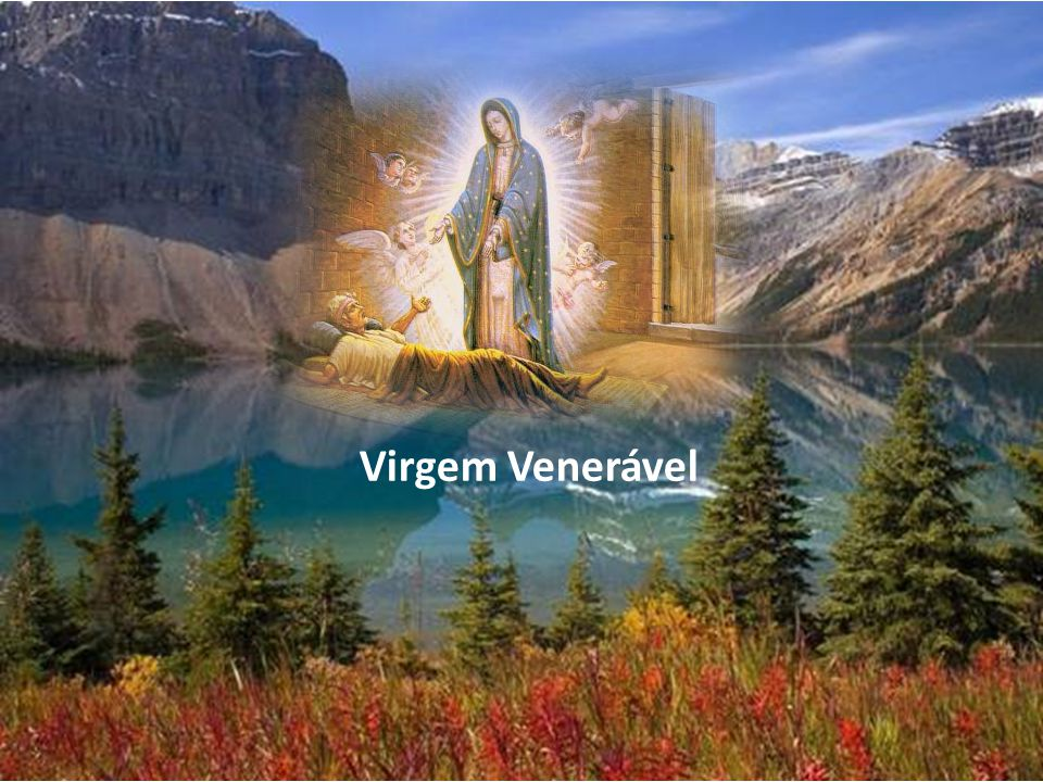 Virgem Venerável