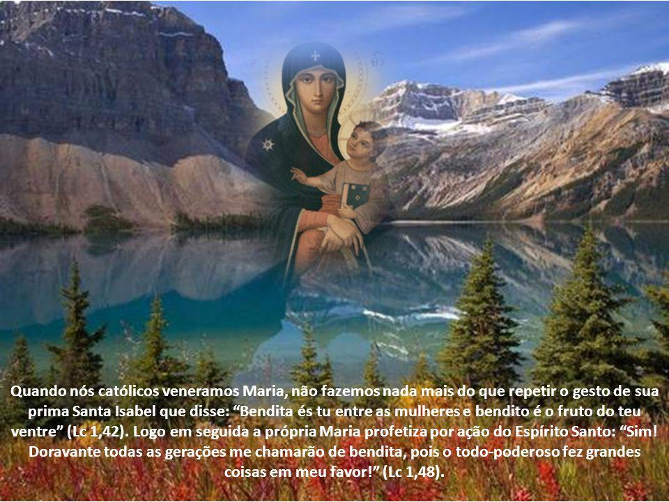 Quando nós católicos veneramos Maria, não fazemos nada mais do que repetir o gesto de sua prima Santa Isabel que disse: Bendita és tu entre as mulheres e bendito é o fruto do teu ventre (Lc 1,42).