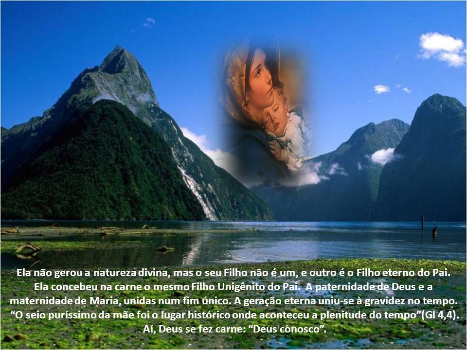 Ela não gerou a natureza divina, mas o seu Filho não é um, e outro é o Filho eterno do Pai.