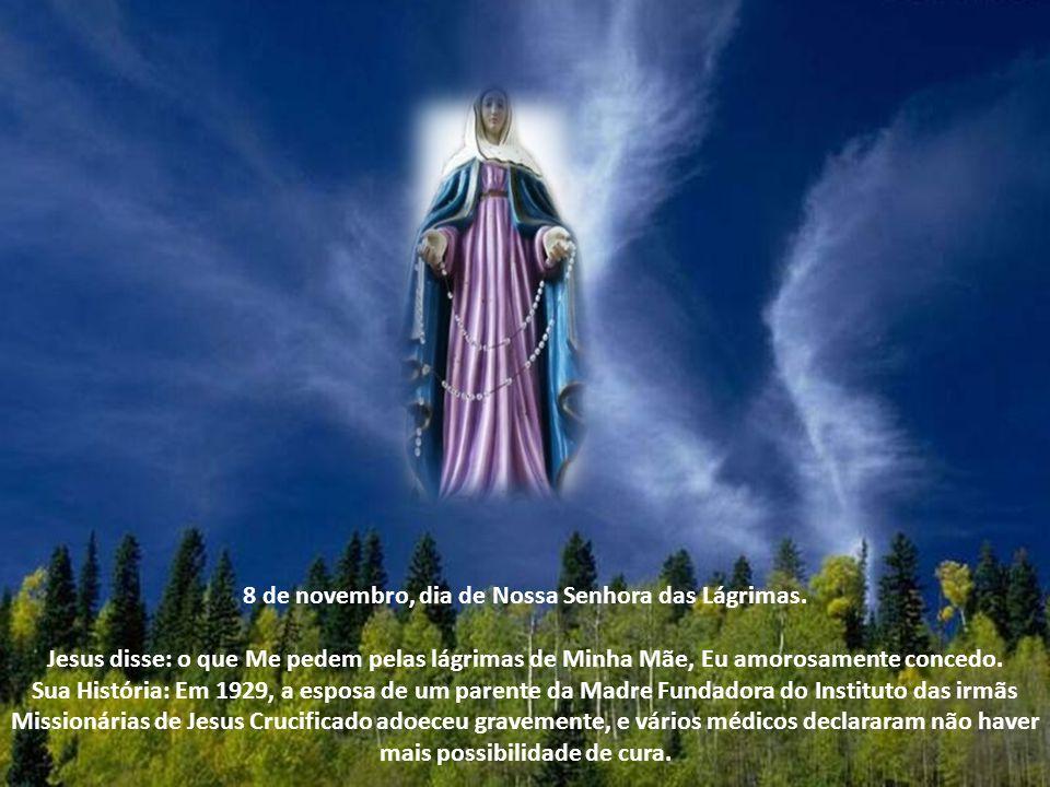 8 de novembro, dia de Nossa Senhora das Lágrimas