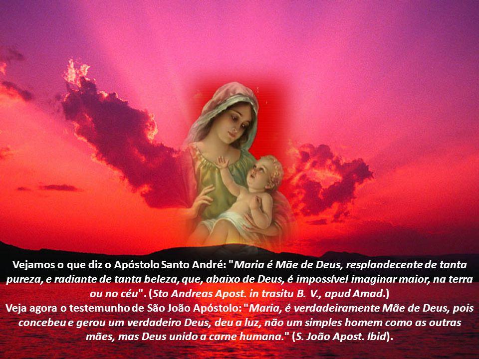 Vejamos o que diz o Apóstolo Santo André: Maria é Mãe de Deus, resplandecente de tanta pureza, e radiante de tanta beleza, que, abaixo de Deus, é impossível imaginar maior, na terra ou no céu . (Sto Andreas Apost. in trasitu B. V., apud Amad.)