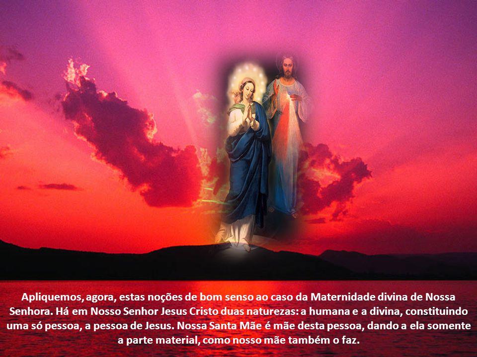 Apliquemos, agora, estas noções de bom senso ao caso da Maternidade divina de Nossa Senhora.