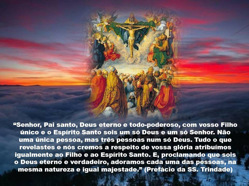 Senhor, Pai santo, Deus eterno e todo-poderoso, com vosso Filho único e o Espírito Santo sois um só Deus e um só Senhor.