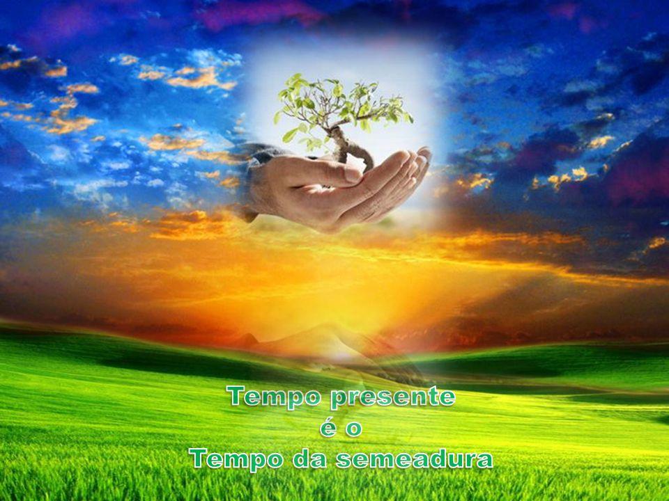 Tempo presente é o Tempo da semeadura