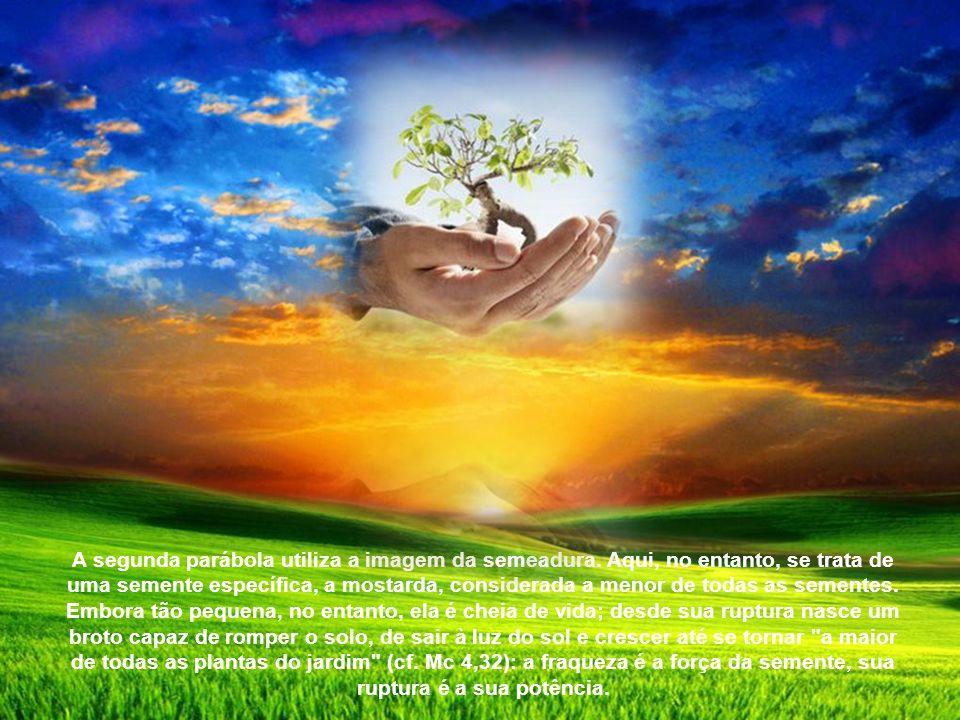 A segunda parábola utiliza a imagem da semeadura