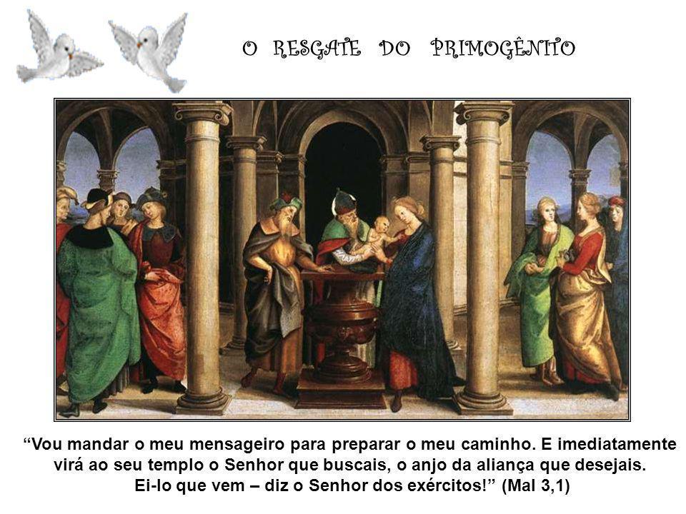 Ei-lo que vem – diz o Senhor dos exércitos! (Mal 3,1)