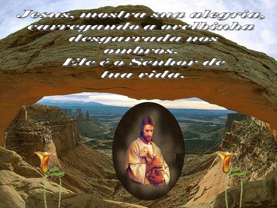 Jesus, mostra sua alegria, carregando a ovelhinha desgarrada nos