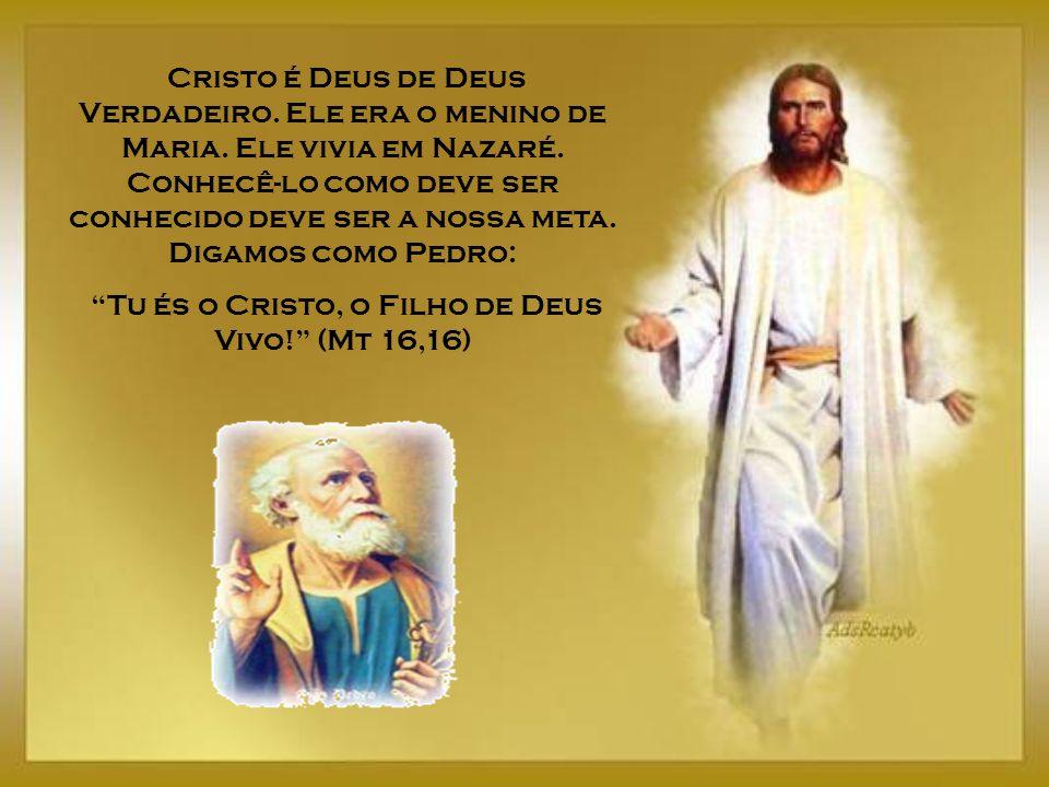 Tu és o Cristo, o Filho de Deus Vivo! (Mt 16,16)