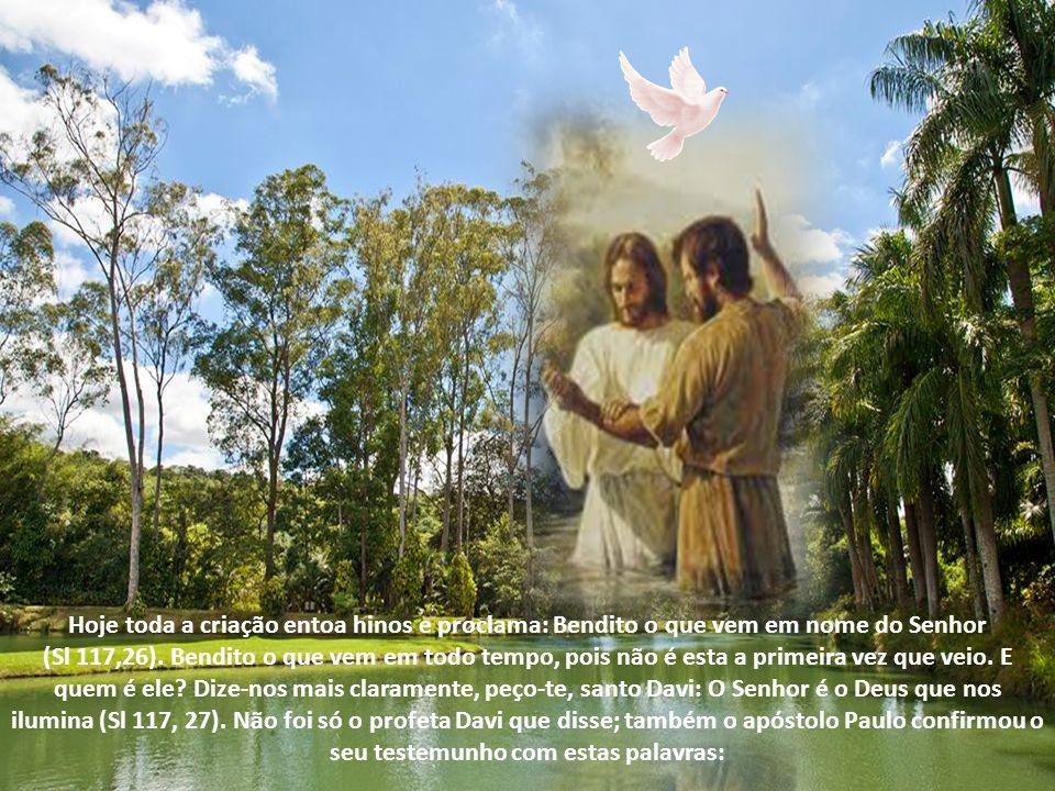 Hoje toda a criação entoa hinos e proclama: Bendito o que vem em nome do Senhor (Sl 117,26).