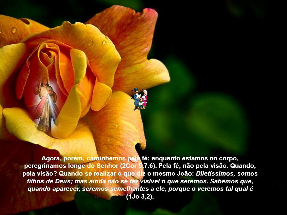 Agora, porém, caminhemos pela fé; enquanto estamos no corpo, peregrinamos longe do Senhor (2Cor 5,7.6).