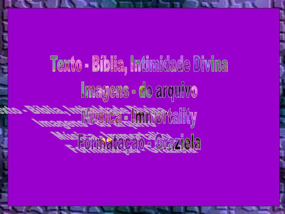 Texto - Bíblia, Intimidade Divina