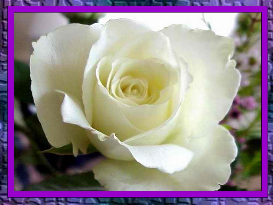É a fé em Cristo Salvador que nos faz aceitar a morte com serenidade, como passagem para o encontro eterno com Deus.