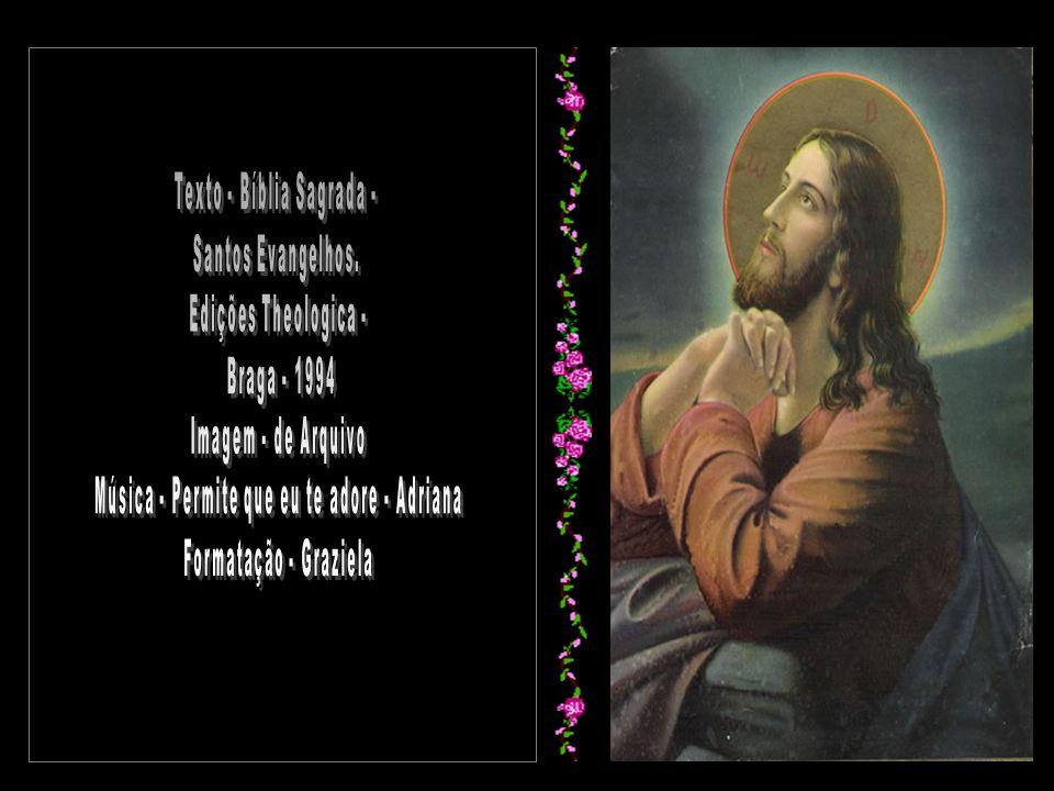 Texto - Bíblia Sagrada - Santos Evangelhos. Edições Theologica -