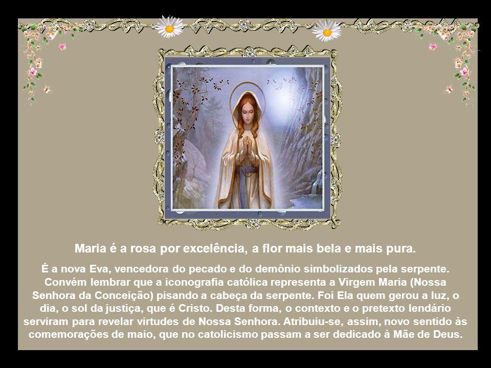 Maria é a rosa por excelência, a flor mais bela e mais pura.