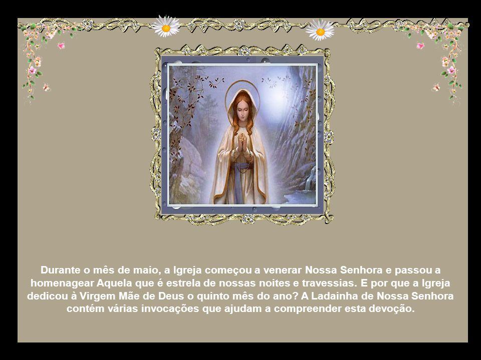 Durante o mês de maio, a Igreja começou a venerar Nossa Senhora e passou a homenagear Aquela que é estrela de nossas noites e travessias.