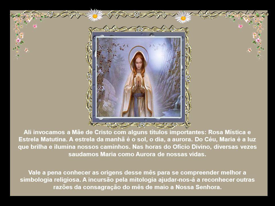 Ali invocamos a Mãe de Cristo com alguns títulos importantes: Rosa Mística e Estrela Matutina. A estrela da manhã é o sol, o dia, a aurora. Do Céu, Maria é a luz que brilha e ilumina nossos caminhos. Nas horas do Ofício Divino, diversas vezes saudamos Maria como Aurora de nossas vidas.