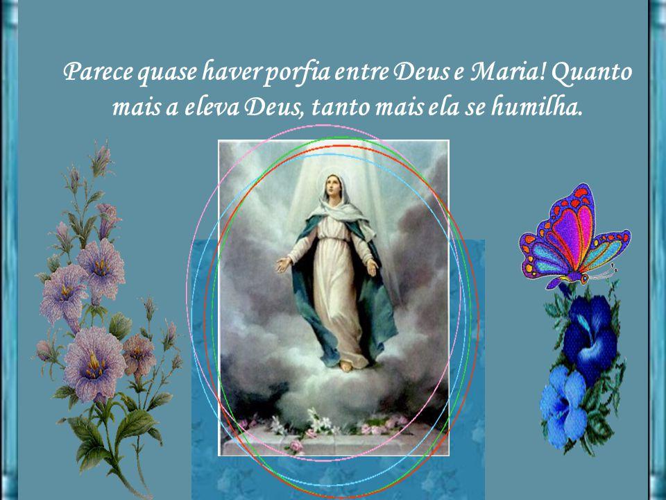 Parece quase haver porfia entre Deus e Maria