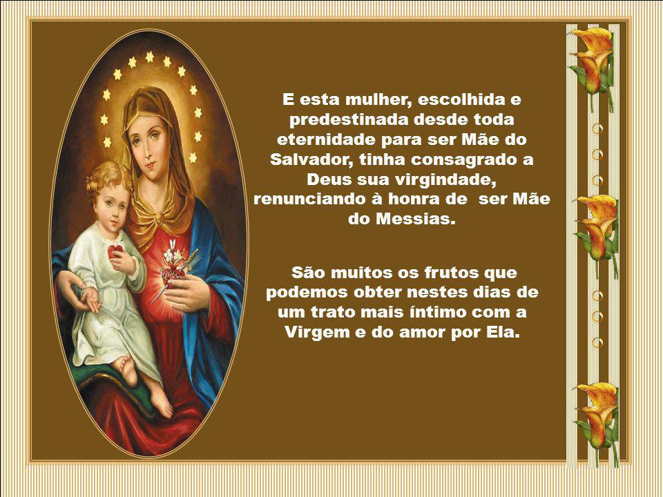 E esta mulher, escolhida e predestinada desde toda eternidade para ser Mãe do Salvador, tinha consagrado a Deus sua virgindade, renunciando à honra de ser Mãe do Messias.