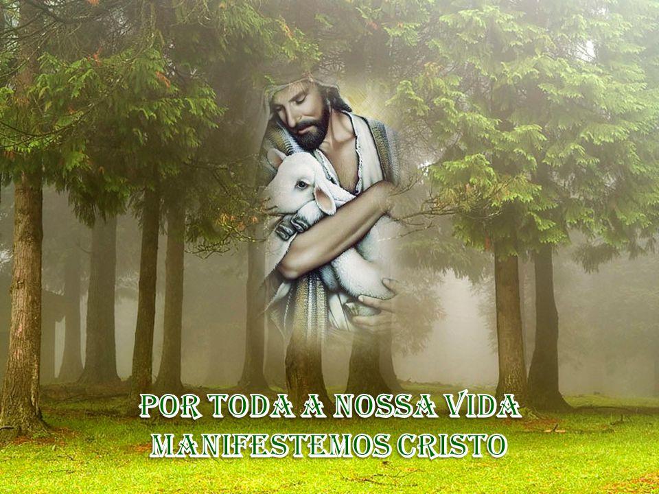 Por toda a nossa vida manifestemos Cristo