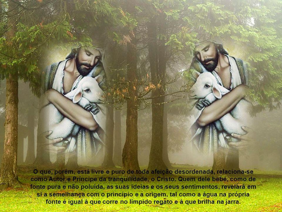 O que, porém, está livre e puro de toda afeição desordenada, relaciona-se como Autor e Príncipe da tranquilidade, o Cristo.