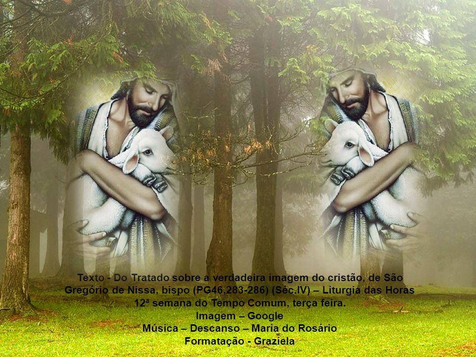 Música – Descanso – Maria do Rosário