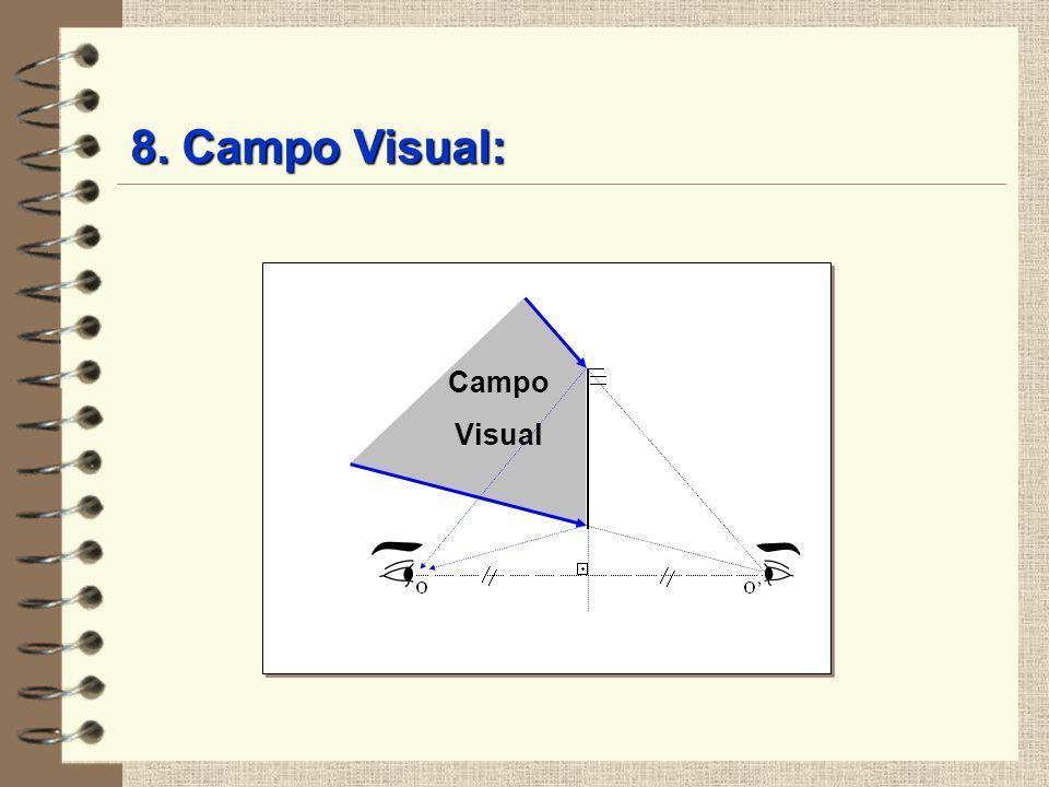 8. Campo Visual: Campo Visual