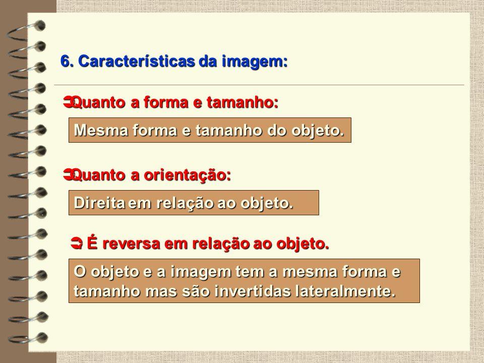 6. Características da imagem: