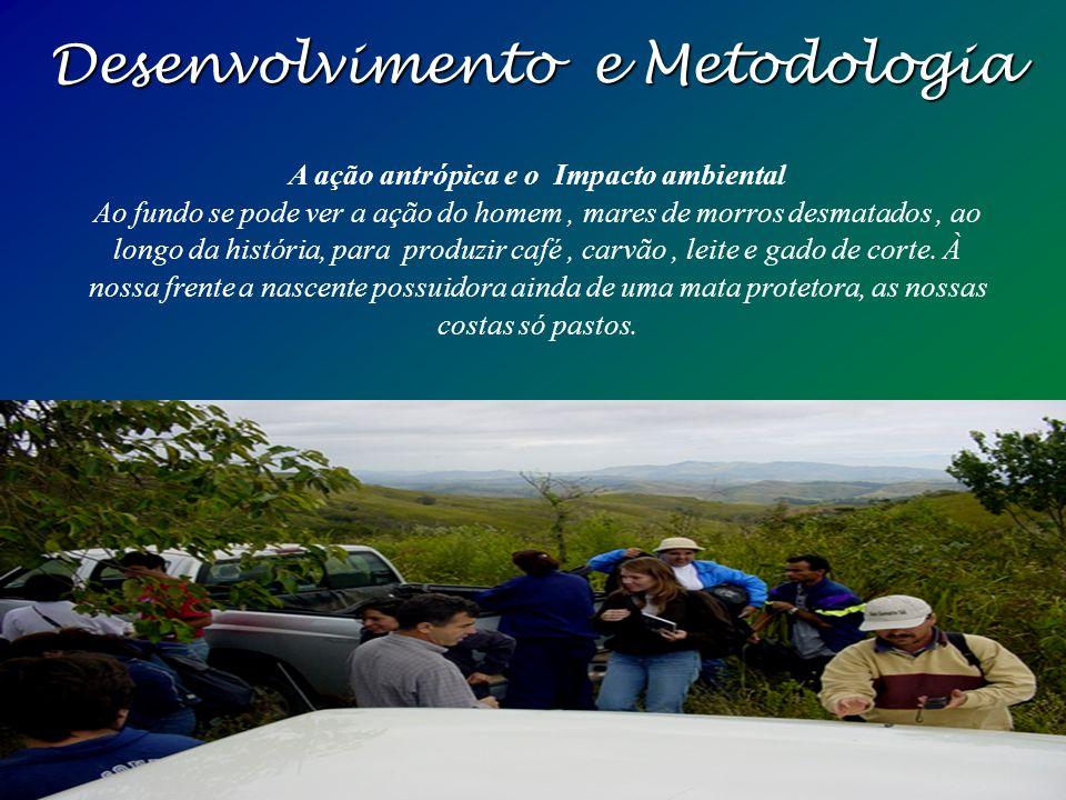 Desenvolvimento e Metodologia