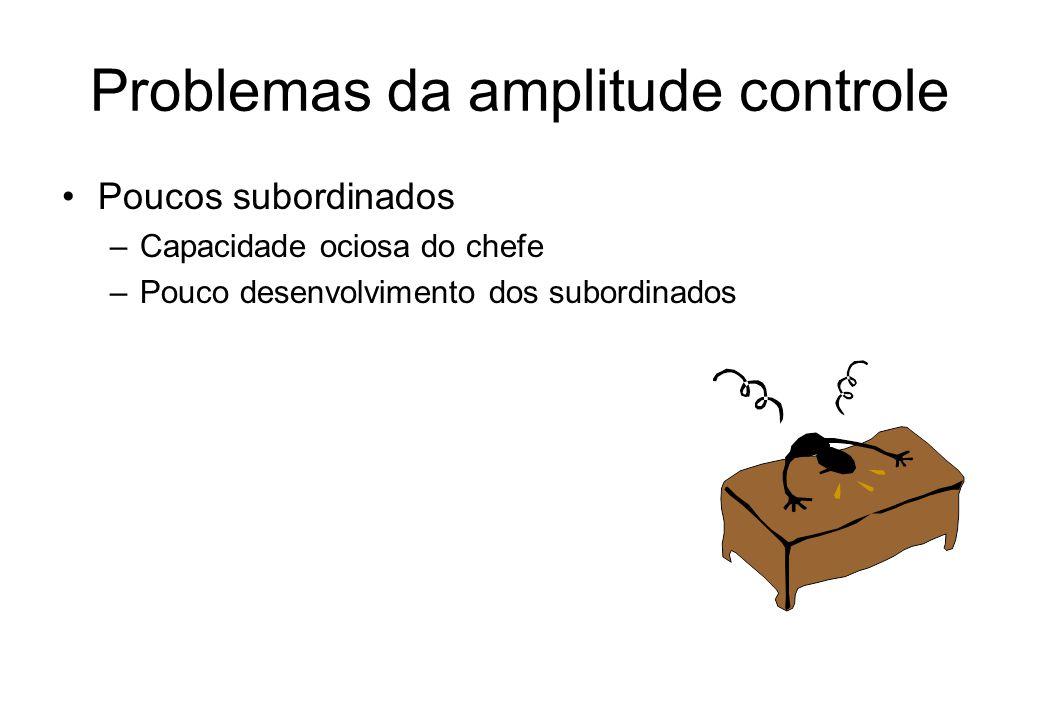 Fatores para análise da amplitude de controle