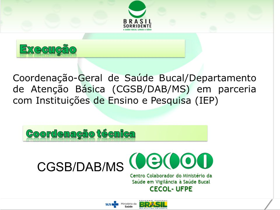 Execução CGSB/DAB/MS Coordenação técnica Realização