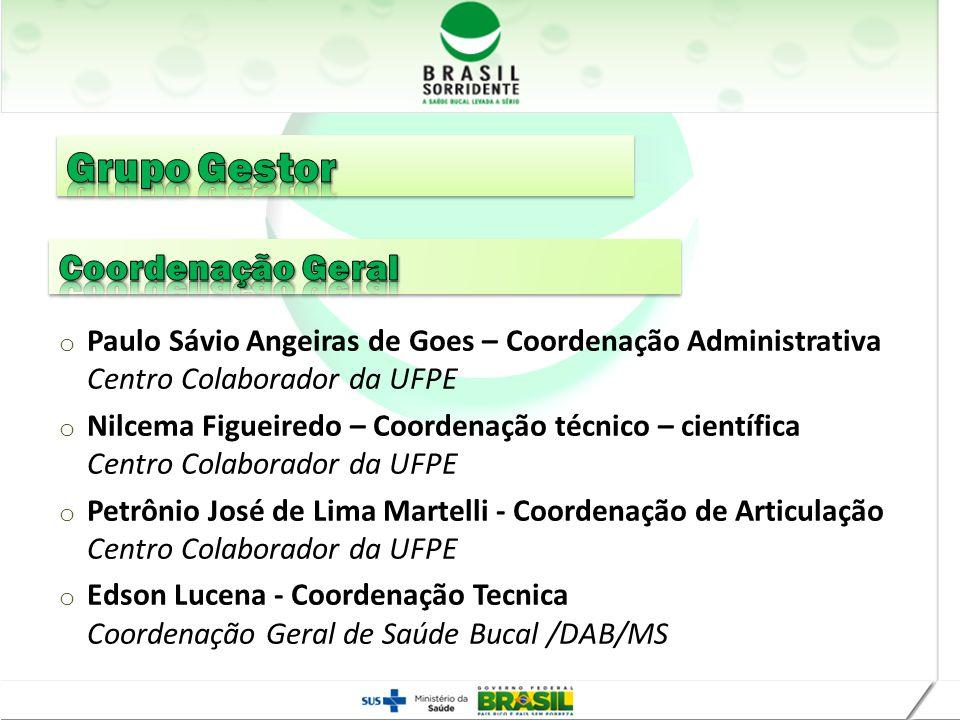 Grupo Gestor Coordenação Geral Realização