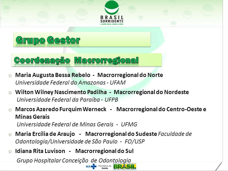Grupo Gestor Coordenação Macrorregional Realização