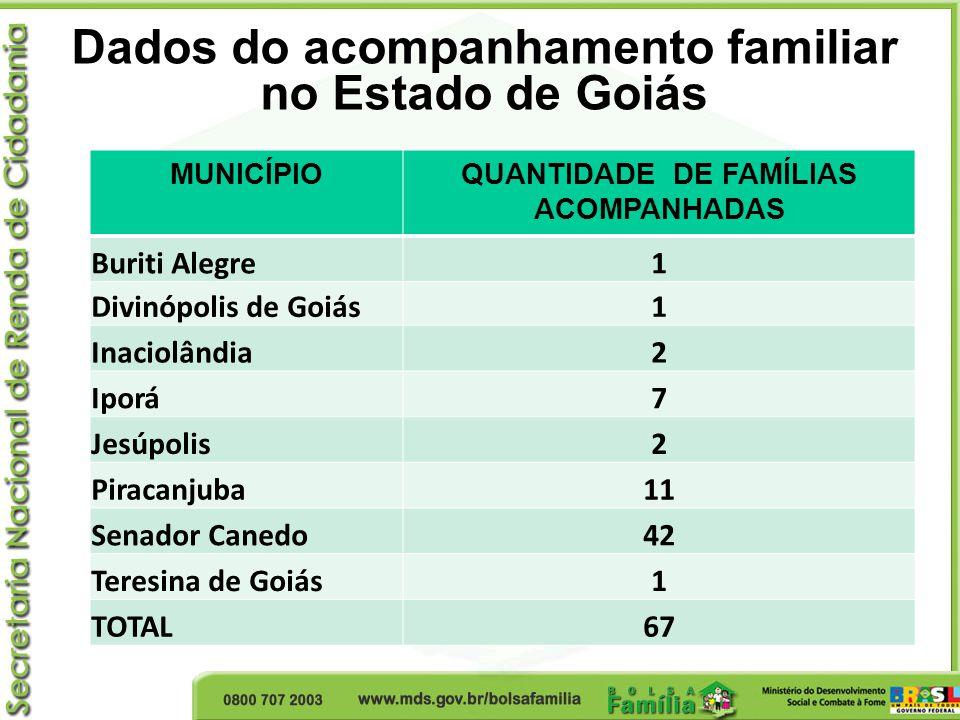 Dados do acompanhamento familiar no Estado de Goiás