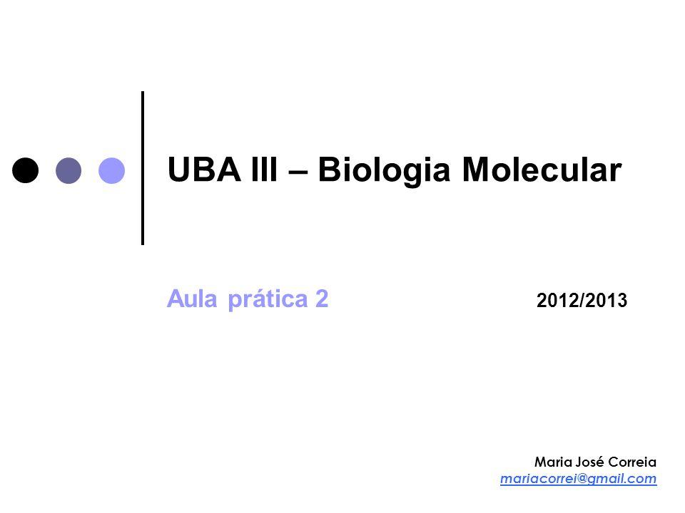 UBA III – Biologia Molecular