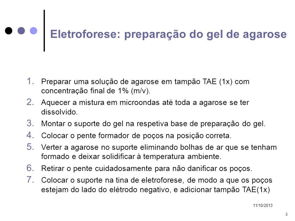 Eletroforese: preparação do gel de agarose