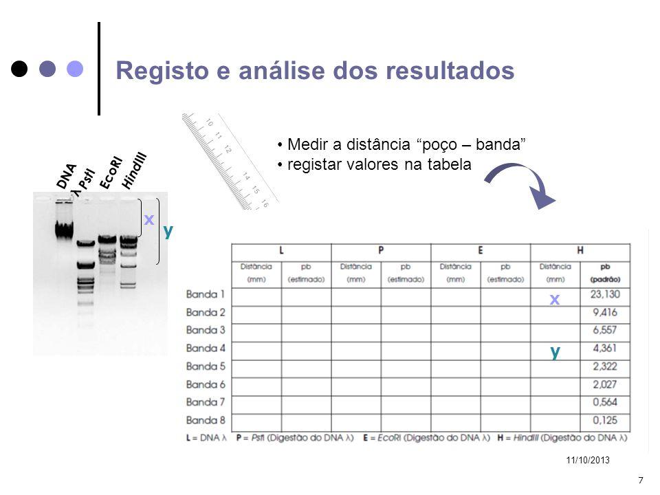Registo e análise dos resultados