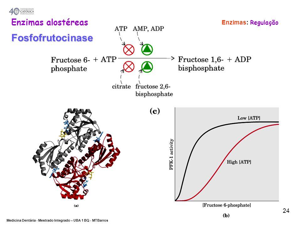 Enzimas: Regulação Enzimas alostéreas Fosfofrutocinase