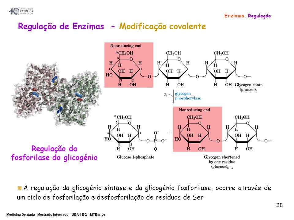 Regulação de Enzimas - Modificação covalente fosforilase do glicogénio