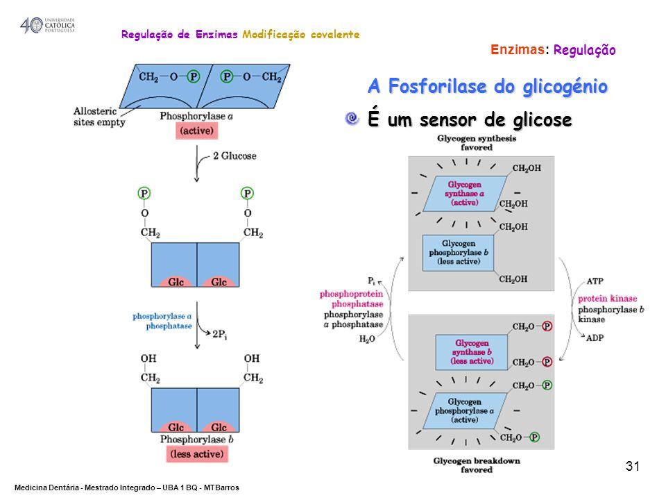Regulação de Enzimas Modificação covalente A Fosforilase do glicogénio