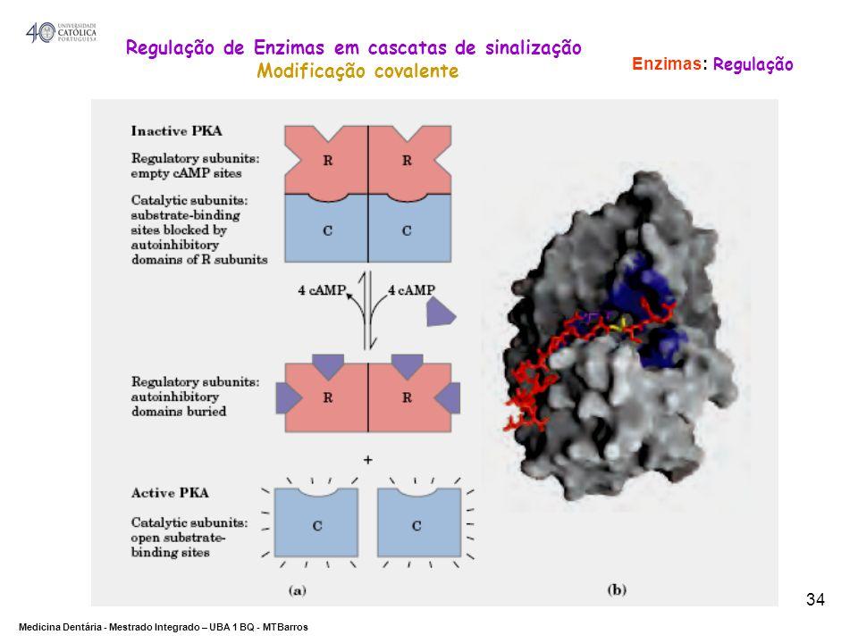 Regulação de Enzimas em cascatas de sinalização Modificação covalente