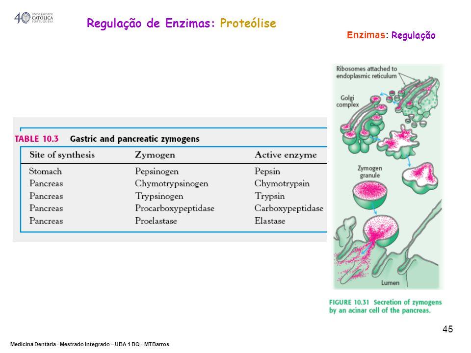 Regulação de Enzimas: Proteólise