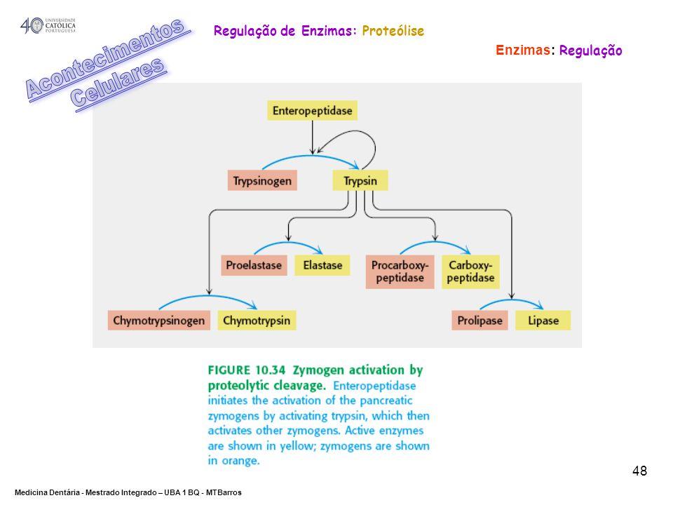 Acontecimentos Celulares Regulação de Enzimas: Proteólise