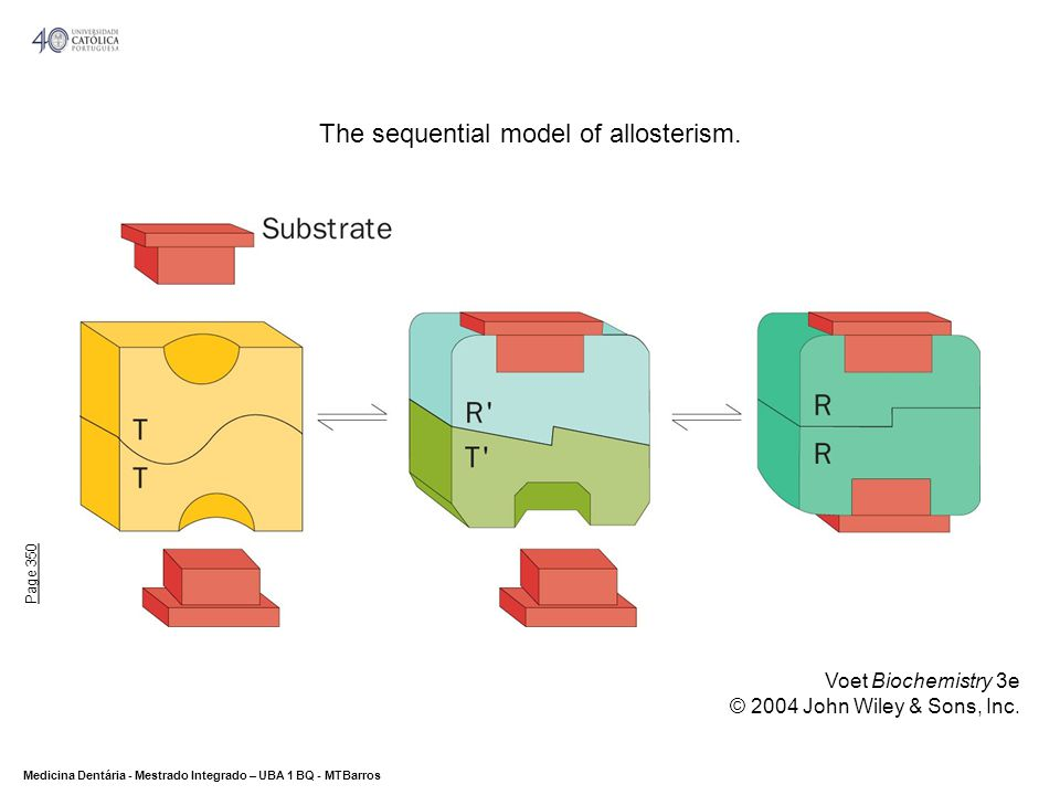 The sequential model of allosterism.