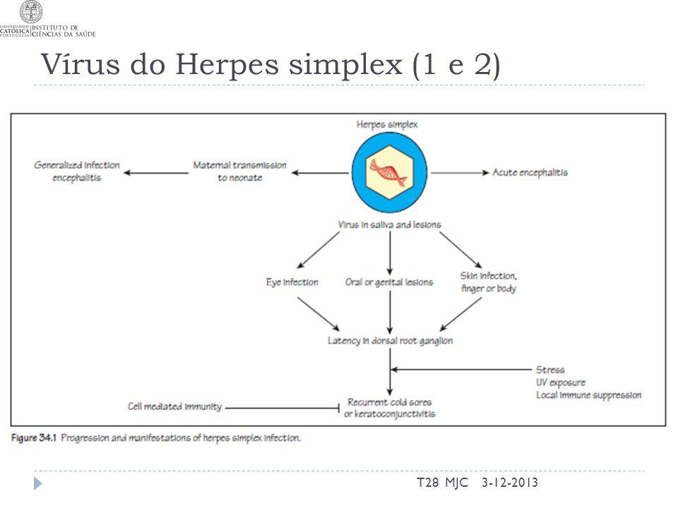 Vírus do Herpes simplex (1 e 2)