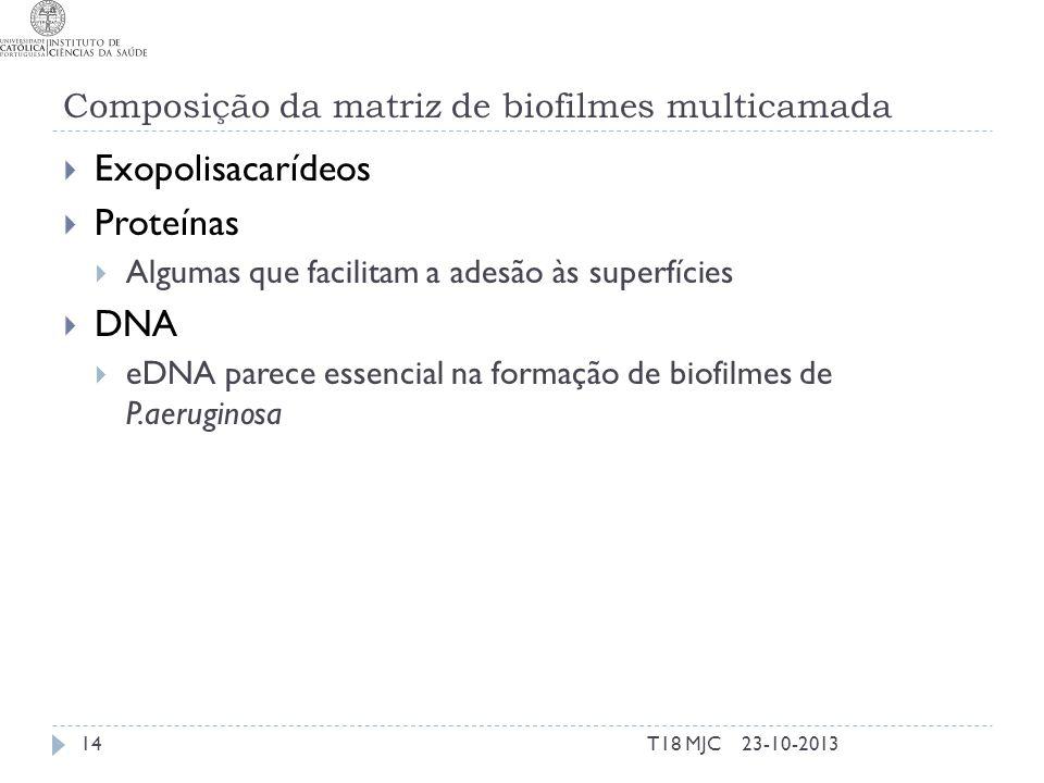 Composição da matriz de biofilmes multicamada