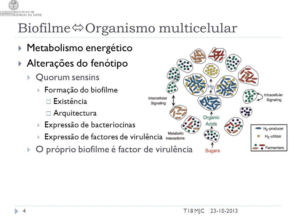 BiofilmeOrganismo multicelular