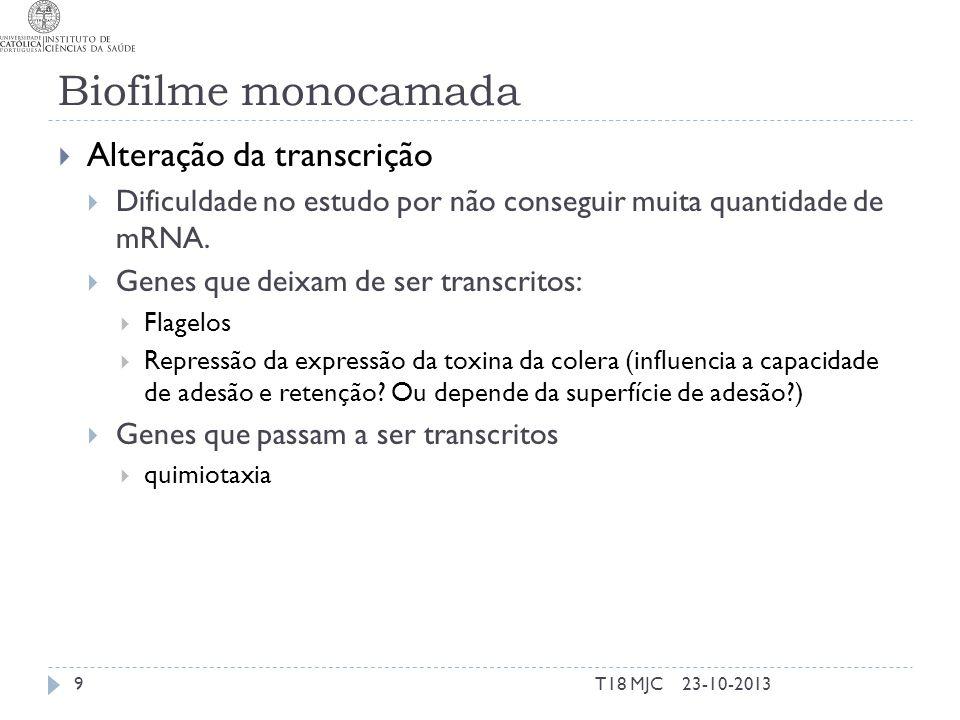Biofilme monocamada Alteração da transcrição