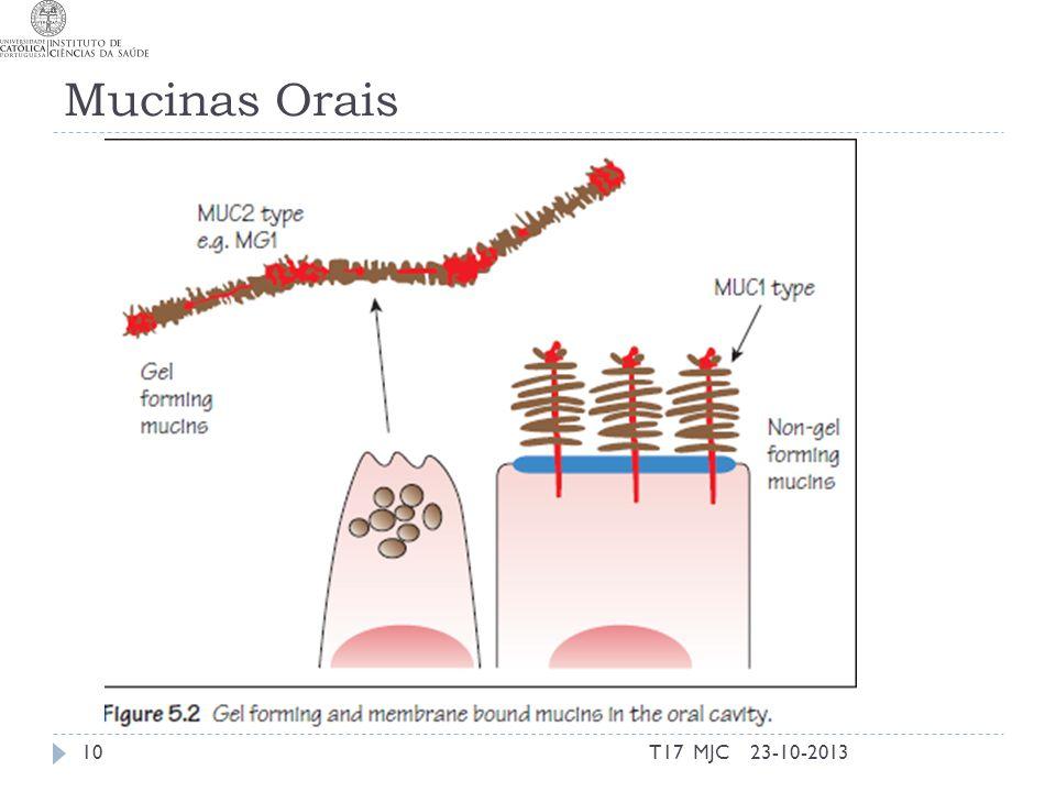 Mucinas Orais T17 MJC 23-10-2013